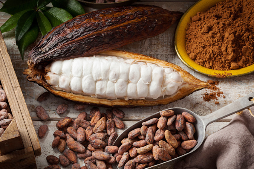 ARB Apex Bank Collaborates With Licensed Cocoa Buying Companies
